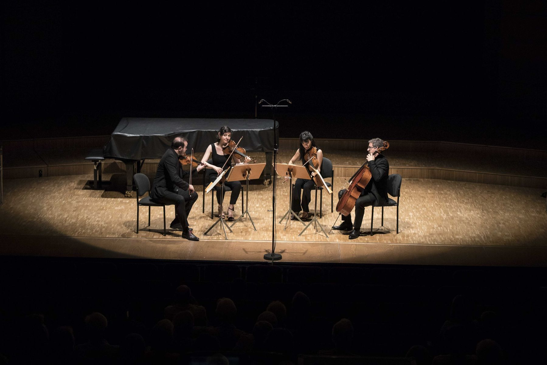 Quatuor-Terpsycordes--Anne-Laure-Lechat3