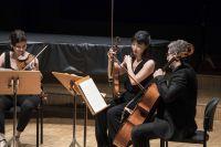 Quatuor-Terspycordes--Anne-Laure-Lechat2